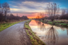 A winding road and ditch show the willow trees in a reflective mood